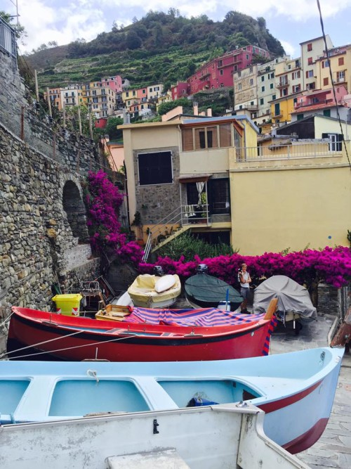 cinque terre colorful flowers and boats