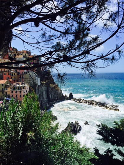 manarola through the trees